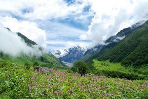 inde-vallee-des-fleurs