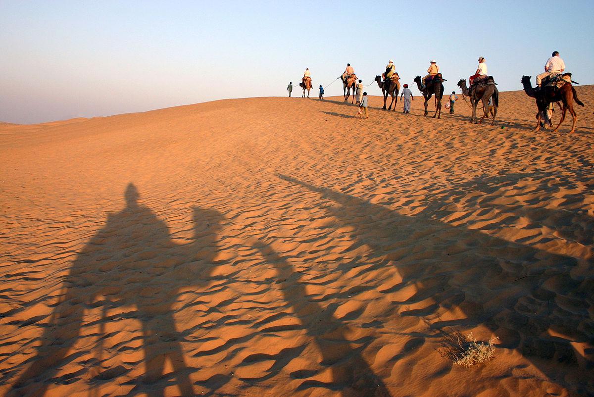 inde-safari-chameau-desert-du-thar
